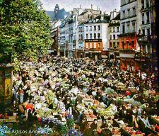 Autochrome Photo, Outdoor Market, Paris, France, 1900s