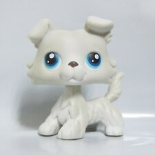 Littlest Pet Shop LPS Toy 363 Light Grey White Collie Dog Blue Eyes Chien Colley