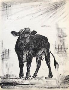 Cow Cowhide Ink Signed Elsa Desportes Painter Animal Fish Cir 1960