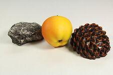 Geocaching Set Apfel + Stein + Tannenzapfen 3 tlg. Cache Versteck Geschenkset