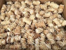 15kg BBQKontor Zündwolli Premium Anzünder aus Holzwolle und Wachs