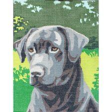 Kit Canevas Le Labrador 15 x 20 cm REF bl0500/048