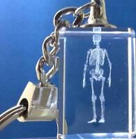 """T Rex Dinosaur 3D Crystal Laser Etching Keychain 4"""" Gift Box Valentine New"""