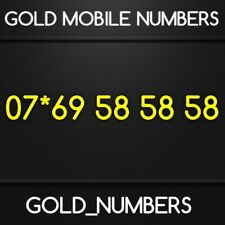 VIP GOLD EASY BUSINESS MOBILE NUMBER	07*69585858