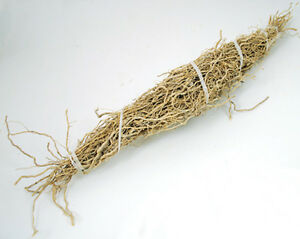 1 Bundle of Patchouli Root for Charms, Spells, Rituals!