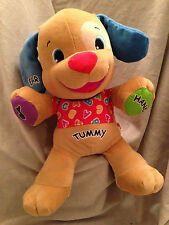 Fisher Price Plush Interactive Plush  Puppy Dog Talks Musical Sings & Learn 14""