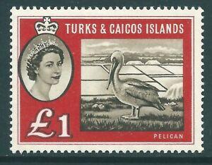 TURKS & CAICOS ISLANDS 1960 QE2 mint £1 'Brown Pelican' SG253