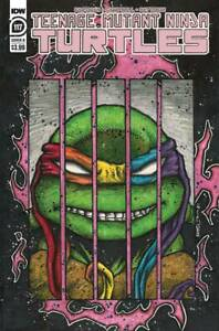 Teenage Mutant Ninja Turtles #108 - 117 You Pick A & B Covers IDW Comics TMNT
