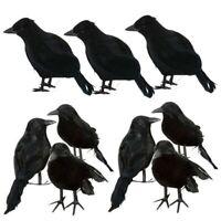 Halloween Fake Blackbird Bird Crow Toy Spooky Scary Decor Party Movie Props