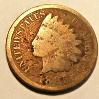 1895 INDIAN HEAD CENT (LOT P88) SEE PHOTOGRAPHS OF ACTUAL COIN - YOU GRADE!