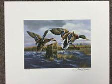 Authentic Limited Edition 1995 Connecticut Duck Stamp Print