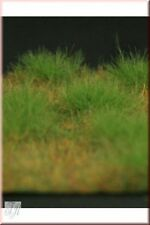 Escala 1/35 Greenline-pasto corto mat-medium Verde Tamaño 100 X 150 Mm