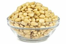 Raw Pine Nuts Tasty and Healthy 1 LB+ & Free Shipping