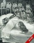 Louis Wain Cat Nightmare Owl Bird Painting Real Canvas Art Print