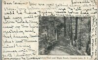 Indian Trail near Maple Beach, Conesus Lake, New York -Postcard F-15