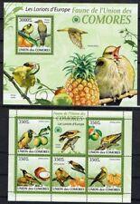 OISEAU LORIOT Comores 5 val 1 bloc de 2009 ** BIRD VOGEL SCOUT SCOUTISME