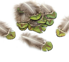 10 Natural Green Peacock Plumage Feathers DIY Art Craft Millinery Fly Fishing