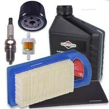 Wartung Zündkerze Luftfilter Briggs Stratton 10-12 PS 253700 256700 280700 28170