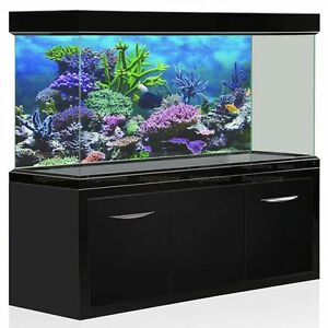 Underwater Coral Aquarium Background Poster Fish Tank Backdrop Sticker