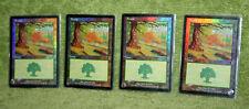 Mtg Forest #349 4x FOIL Odyssey Magic the Gathering Basic Land Jerry Tiritilli