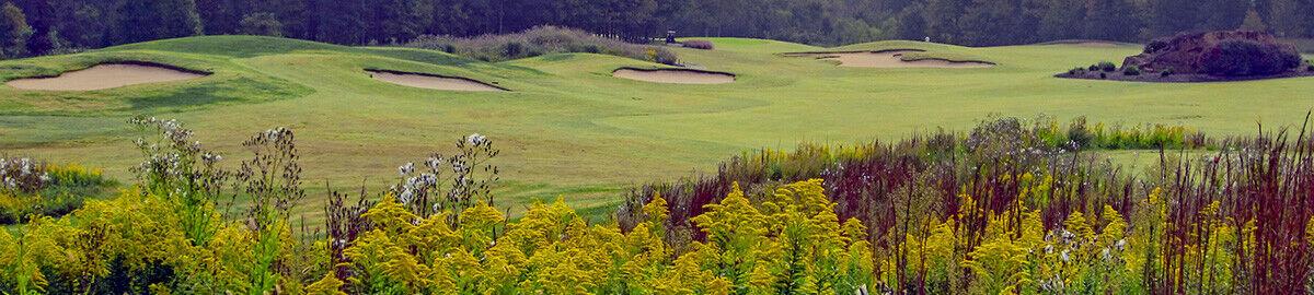 Brian s Briteside Golf Club Shop