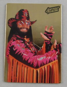 Randy Savage WWE Pro Wrestling Trading Card Action Packed 1995 WWE Gold #39