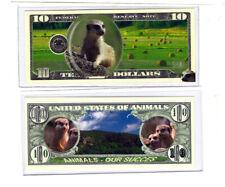 Dollar Erdhörnchen die neugierigen Tierchen
