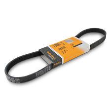 V-Ribbed Drive Belt CONTITECH 5PK865 BMW M52 X3 X5 11281744986 11282247743