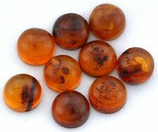 TWO 6mm Round Natural REAL Baltic Amber Cab Cabochon Gem Stone Gemstone EBS7274