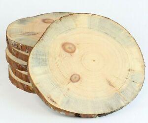 KIEFER Restposten Holzscheiben Astscheiben Baumscheiben Floristik 6 St 20-25 cm