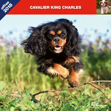 CALENDRIER 2018 CAVALIER KING CHARLES AFFIXE