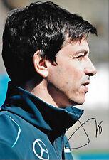 TOTO WOLFF firmata 12x8 F1 Mercedes-AMG direttore esecutivo del team Ritratto