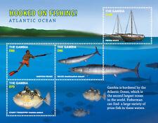 Gambia 2018 marine life fish  hooked on fishing  I201803