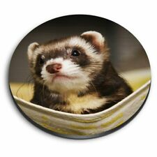 Round Mdf Magnets - Ferret Hammock Pet Rodent Animal #16329