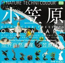 Nature Techni Colour gashapon capsule full set of 8 pcs