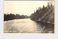 RPPC REAL PHOTO POSTCARD MICHIGAN NEWBERRY TAHQUAMENON RIVER