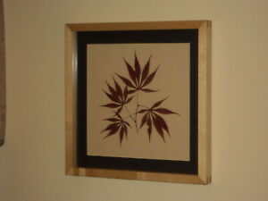 Framed Autumnal Botancial - Japanese Maple Tree Leaves with Sugar Maple Frame