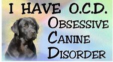LABRADOR (Black) - OBSESSIVE CANINE DISORDER Dog Car Sticker By Starprint