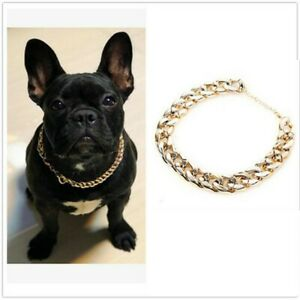 Gold Pet Choke Chain Necklace Collar Small Cat Dog French Bulldog Puppy Teddy