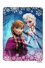 Disney Frozen Frozen Land 40x50 Royal Plush Raschel Throw