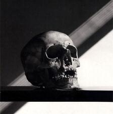 "1988 'SKULL' photo art by ROBERT MAPPLETHORPE--14""X11"""