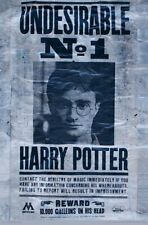 HARRY POTTER - UNDESIRABLE NO 1 POSTER - 22x34 - 17575