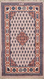 Paisley Botemir Oriental Area Rug Wool Hand-Knotted Traditional Carpet 2x3 Foyer
