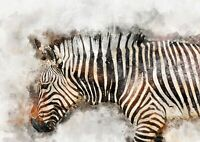 Zebra, watercolour painting, original artwork, unique gift (print)