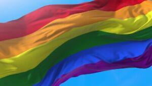 PRIDE FLAG LGBT GAY PRIDE FLAG 90CM X 150CM LARGE 10% TO LGBT CHARITY