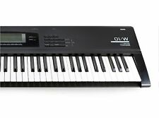 Korg 01/W Music Workstation - REPLACEMENT BATTERY ONLY