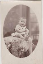 PHOTO ANCIENNE CPA- BEBE RIEUR/ROBE /STUDIO MILLECAMPS/AUCHEL- peau de mouton
