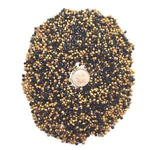 70 grams vintage SS12 Swarovski Chaton rhinestones Jet Black gold foiled