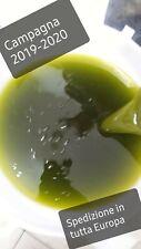 Olio extravergine di oliva biologico siciliano nuova molitura 2019-2020 litri 5