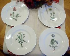 Beautiful Vintage QUEEN'S Bone China Horchow Collection Wildflower Dishes